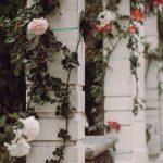 Cei cinci piloni ai stării de bine